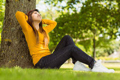 Beautiful woman sitting against tree in park Stock Photography
