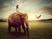 Beautiful woman sitting on an elephant Royalty Free Stock Images