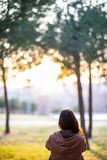 Beautiful woman sitting on the grass in a park during fall sunset royalty free stock photography