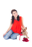 Beautiful woman sitting with little dog yorkshire terrier, gift Royalty Free Stock Images