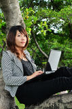 Beautiful woman sitting on tree and playing laptop Royalty Free Stock Images