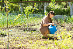 Beautiful woman sitting and watering the plants Stock Photo