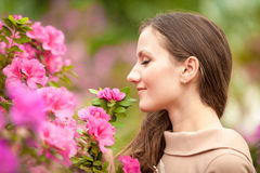 Beautiful woman smelling pink flowers on tree Stock Image