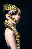 Beautiful woman,snake,jewelry,make-up. Beautiful young woman with Snake on her head like a hair.Brunette model with fashion make up. Beauty close up studio shot royalty free stock images