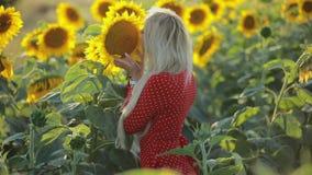 Beautiful woman sniff flower in sunflower field, slow motion. Beautiful woman sniff a flower in sunflower field, slow motion stock video footage