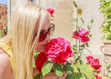 Beautiful woman sniffs fragrant red roses in the garden stock photography
