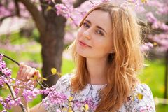 Beautiful woman in spring blossom Stock Photos