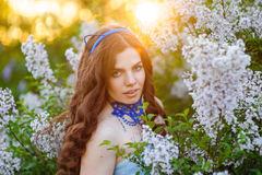 Beautiful woman in the spring garden lilac at sunset Royalty Free Stock Photos
