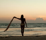Beautiful woman standing on the beach at sunset royalty free stock photography