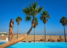 Beautiful woman standing on bent palm tree. Trunk at infinity pool Stock Photo