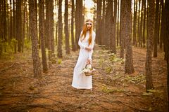 Beautiful woman standing in forest Stock Photo
