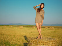 Beautiful woman standing on hay stack sunset Stock Photos
