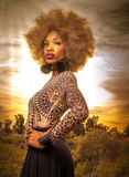 Beautiful woman standing proudly in wild desert location Stock Photography