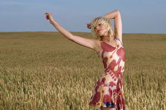 Beautiful woman standing in wheat field Royalty Free Stock Images