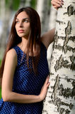 The beautiful woman stands at birch Stock Image