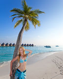 The beautiful woman stands near palm tree against the tropical island Stock Image