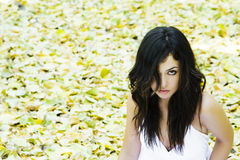 Beautiful woman staring at camera. In a fall background Stock Photography