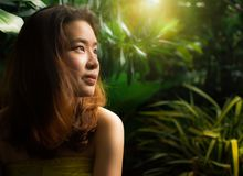 A beautiful woman in the nature with warm light royalty free stock photos