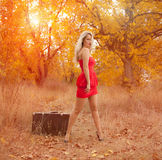 Beautiful woman with suitcase Stock Photo