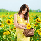Beautiful woman in a sunflower field Stock Image