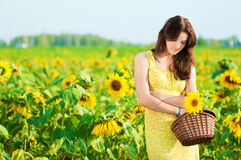 Beautiful woman in a sunflower field Stock Images