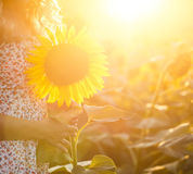 Beautiful woman in sunflower field Royalty Free Stock Photos