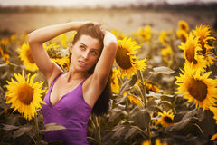 Beautiful woman in a sunflower's field Royalty Free Stock Photography