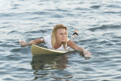 Beautiful woman with the surfboard Royalty Free Stock Photography