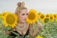 Beautiful woman surrounded by sunflowers Stock Photos