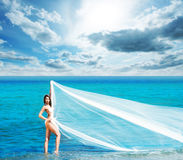 A beautiful woman in a swimsuit posing with a silk blanket on the beach Royalty Free Stock Images