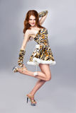 Beautiful woman in tiger costume Royalty Free Stock Photography