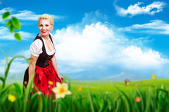 Beautiful woman in a traditional bavarian dirndl. In a spring scene royalty free stock images
