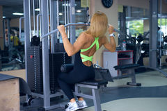Beautiful woman trains back in gym Stock Photos