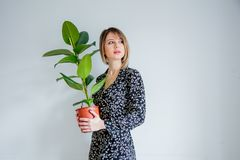 Beautiful woman in trendy dress with plant in a pot. Stay near white wall at home stock photography