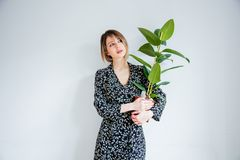 Beautiful woman in trendy dress with plant in a pot. Stay near white wall at home royalty free stock photo