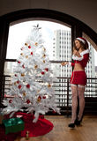 Beautiful Woman trimming a Christmas tree Royalty Free Stock Images