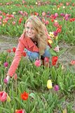 Beautiful woman with tulips in the fields Stock Images