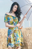 Beautiful woman with umbrella in the Rye. The model name is Andreea Anghel - Photo taken in Braila - Romania stock photos