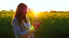 Beautiful woman uses a phone at sunset in a field of yellow flowers. stock footage
