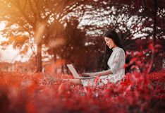 Beautiful woman using laptop in the park stock photo
