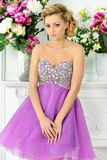 Beautiful woman in violet  dress in luxury studio. Royalty Free Stock Image