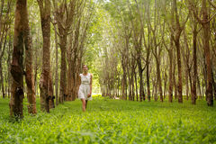 Beautiful woman walking in the forest Royalty Free Stock Photography