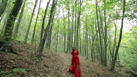 Beautiful Woman Walking Through Green Forest stock video footage