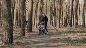 Beautiful woman walking with her little daughter and pushing push stroller in park. Mom walks with a stroller in the. Park stock footage
