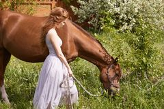 Beautiful woman walking with horse Stock Photo