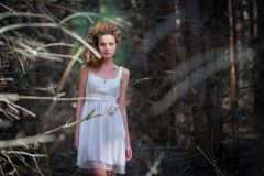 Beautiful woman walking in mystery forest Stock Photography