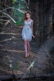 Beautiful woman walking in mystery forest Stock Photos