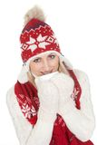 Beautiful woman in warm winter clothing Stock Image