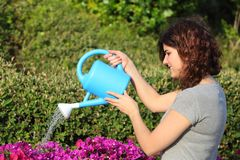 Beautiful woman watering flowers with a watering can Stock Photos