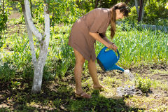 Beautiful woman watering the garden Stock Images